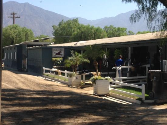 Arcadia, CA: The home of American Pharoah. During Sea Biscuit Tour
