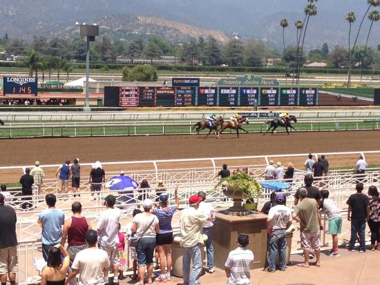 Arcadia, CA: Santa Anita track, just beautiful!