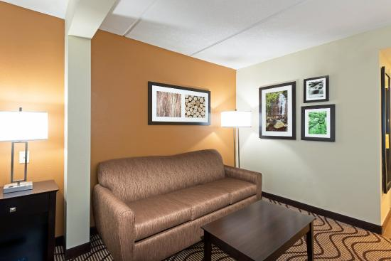 La Quinta Inn & Suites Tampa North I-75: Guest Room