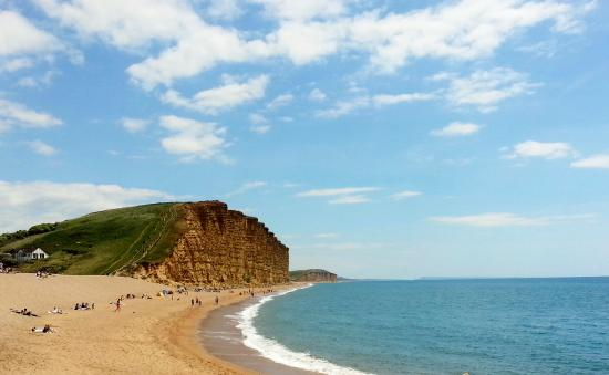 Charmouth, UK: Cliffs at West Bay ( used as opening scene for BROADCHURCH