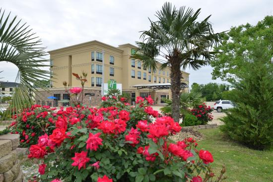 Photo of Holiday Inn Montgomery Airport South