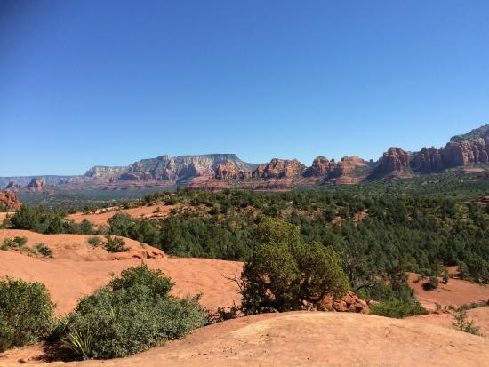 Pink jeep tours sedona coupons