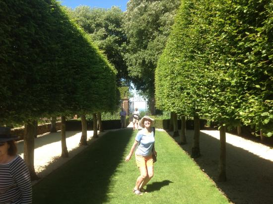Chipping Campden, UK: Manicured trees