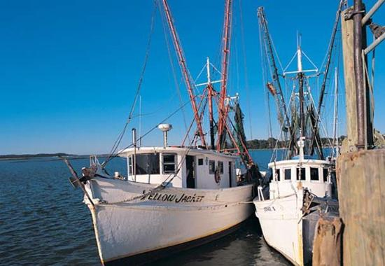 deep sea fishing picture of hilton head marriott resort