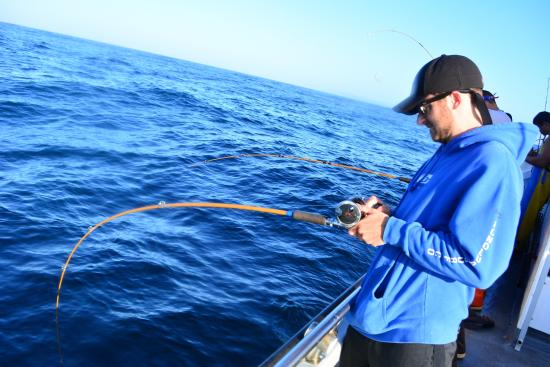 Fish on for Westport charters fishing report