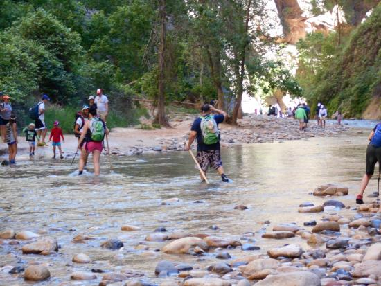 Springdale, Γιούτα: The beginning of the Narrows