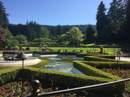 Color Explosion Picture Of Butchart Gardens Central Saanich Tripadvisor