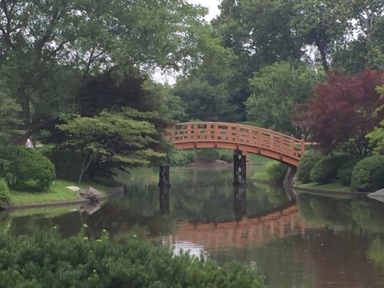 Japanese Garden Picture Of Missouri Botanical Garden Saint Louis Tripadvisor