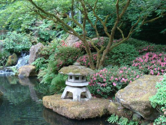 Koi pond and waterfall picture of portland japanese for Portland japanese garden koi