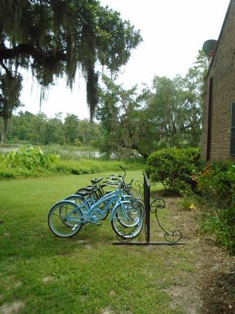 Mansfield Plantation: Bicycles to tour property