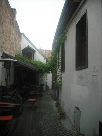 Photo of Felinarul Hostel Sibiu