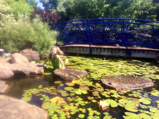 The Reading Railroad Picture Of Botanical Garden Of The Ozarks Fayetteville Tripadvisor