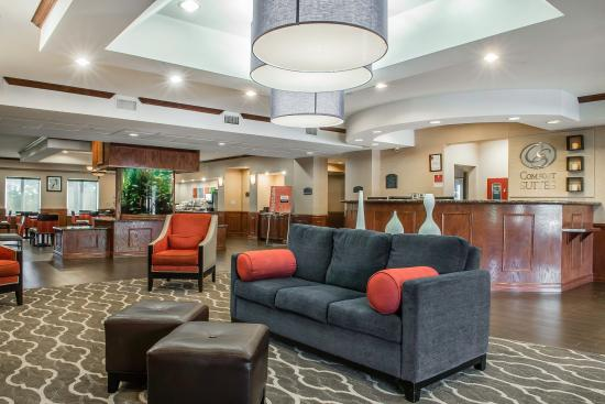 Comfort Suites Near Texas A&M - Corpus Christi