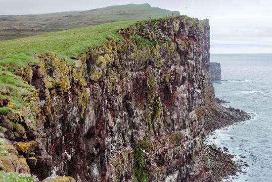 Látrabjarg Bird Cliffs Iceland Latrabjarg Bird Cliffs