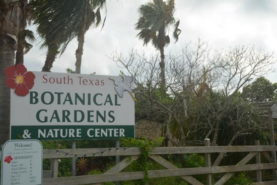 Look Here Picture Of South Texas Botanical Gardens