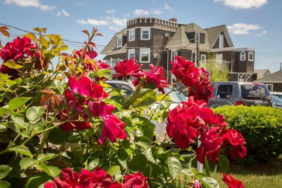 Photo of Ocean Rose Inn Narragansett
