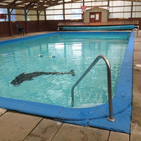Indoor swimming pool Campsites in poole with swimming pool