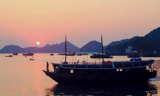Tour In Cat Ba - Day Tours
