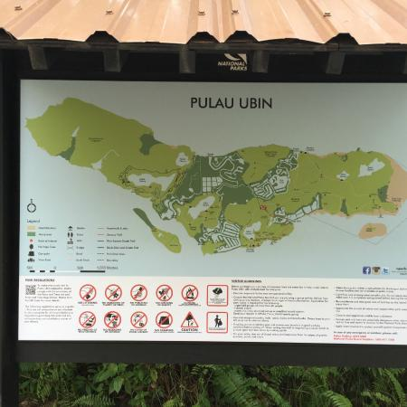 pulau ubin field trip report Pulau tioman hotels see all indonesia  at tripadvisor, we believe in the power of travel — and in helping you make the most of every trip.