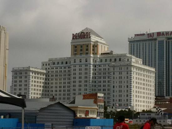 Herring Gull Says Greetings From Atlantic City Picture Of Resorts Atlantic