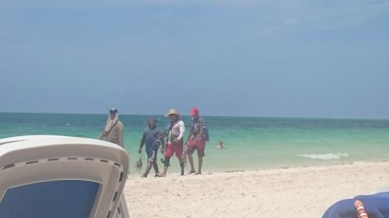 Local fishermen on the beach picture of melia cayo coco for Beaver pool piscine