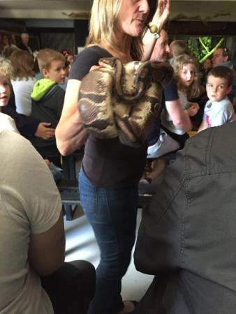 Рингвуд, UK: Reptile centre show up close and personal!!