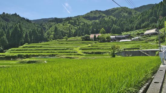 Hata Rice Terraces