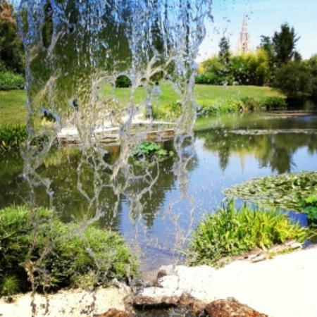 Latour marliac gardens things to see - Jardin des nenuphars le temple sur lot ...