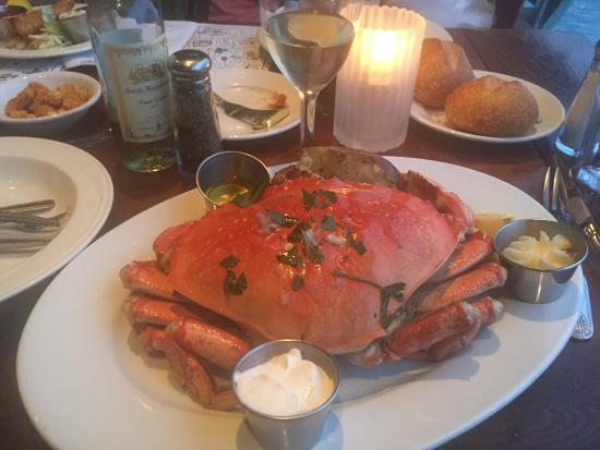 Dungeness crab for Fish hopper monterey