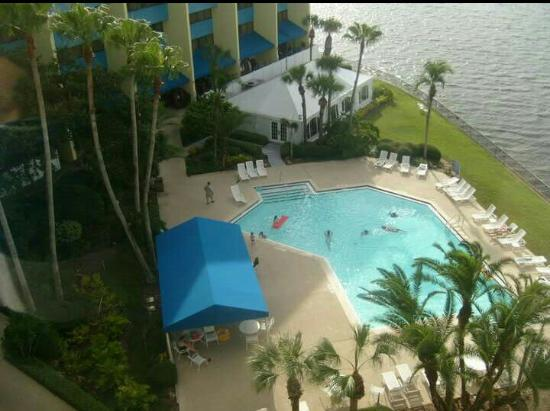 DoubleTree Suites by Hilton Tampa Bay - Picture of ...