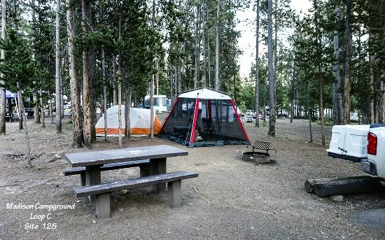 Photo of Madison Campground Yellowstone National Park