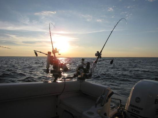 Beautiful boat ride in addition to fishing picture of for Fish tales charters
