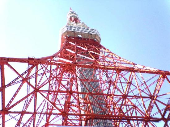 Shrine view from up above - Picture of Tokyo Tower, Minato - TripAdvisor