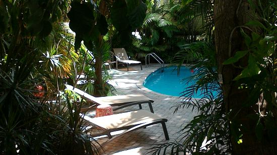 Tropical Inn: Quiet swimming pool. perfect for relaxing