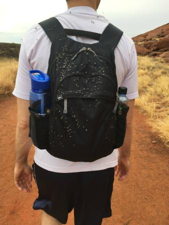 how to avoid flies in uluru