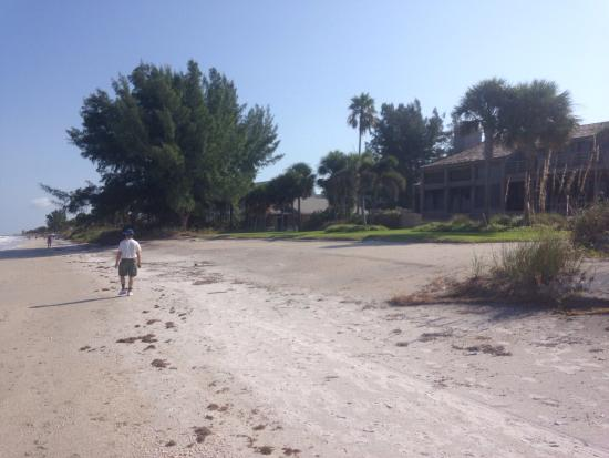 Photo of Laughing Lizard Bed and Breakfast Indian Rocks Beach