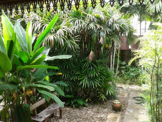 Photo of The Palm House Mae Hong Son