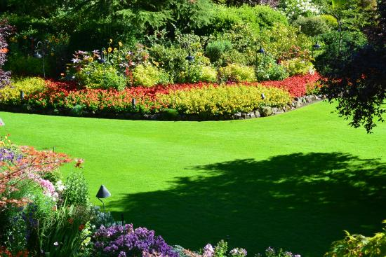 Postcard worthy picture of butchart gardens central - Best time to visit butchart gardens ...