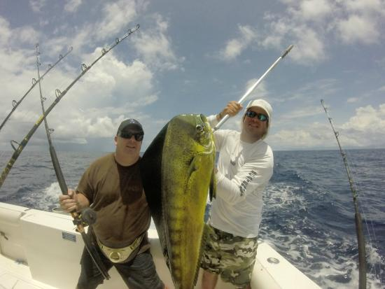 Costa rica deep sea fishing picture of reel in luxury for Deep sea fishing costa rica
