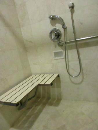 A rool in shower with a fold down bench picture of cow for Cow hollow motor inn
