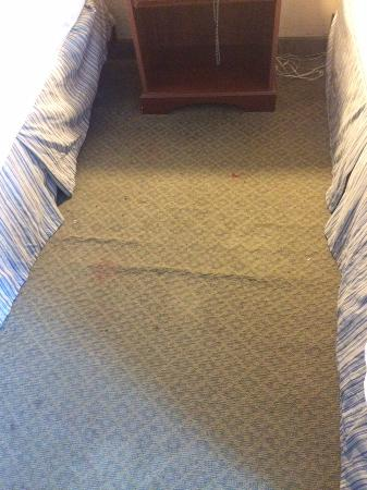 Cheverly, MD: winkled stained carpet
