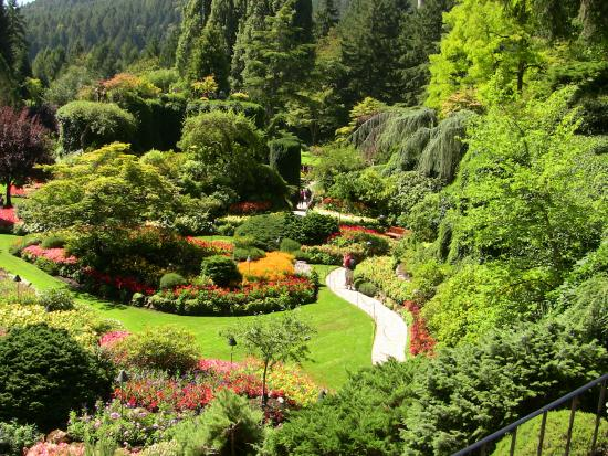 Tea Time Picture Of Butchart Gardens Central Saanich Tripadvisor