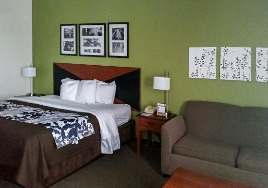 Pleasant Hill, IA: Pullout Suite