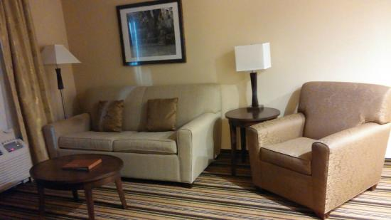 Homewood Suites Charlotte/Ayrsley: living room area (with big pillows)