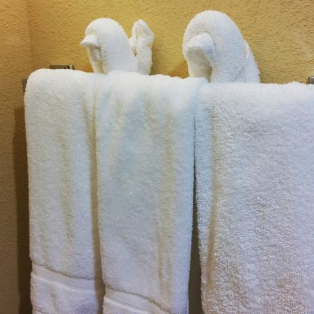 Homewood Suites Charlotte/Ayrsley: nice touch