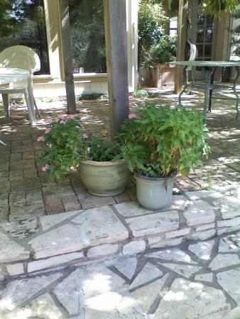 Photo of Chicken Paradise Bed And Breakfast San Antonio