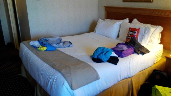 Holiday Inn Express Chicago O'Hare: Bed