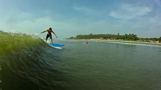 Surf Wala - Day Surfing