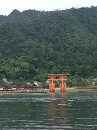 Photos of Miyajima, Hatsukaichi - Attraction Images - TripAdvisor