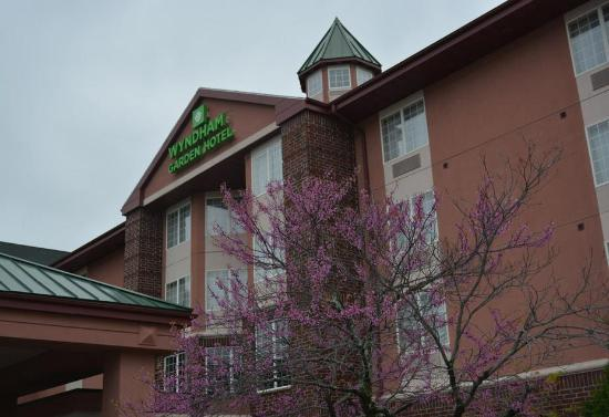 Quality Inn & Suites - Madison
